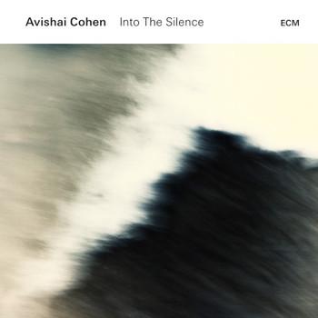 Into__he_silence