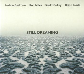 Still_dreaming